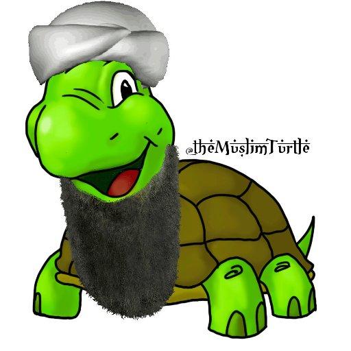 The Muslim Turtle
